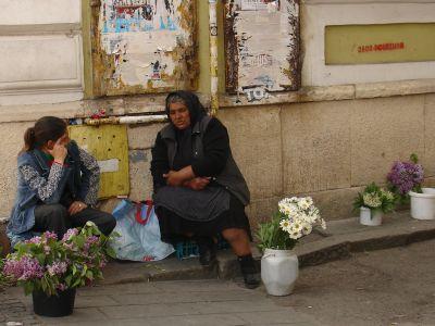 I Cluj, Rumänien (2014). Kanske är denna blomsterförsäljerska en romni (romsk kvinna).