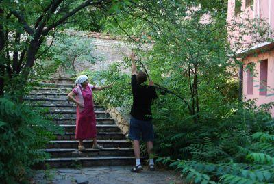 I trädgården till en kyrka i Plovdiv hjälpte jag denna kvinna att böja ner grenarna så att hon kom åt frukten.